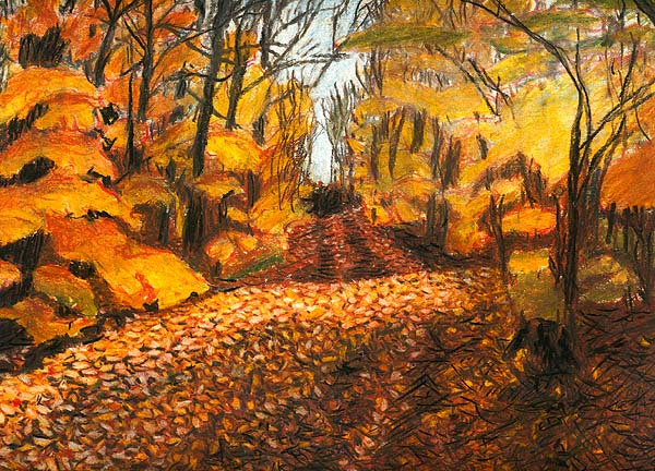 Buck Lake Road - original drawing using pastels by Cork Ireland Freelance Artist - Art van Leeuwen