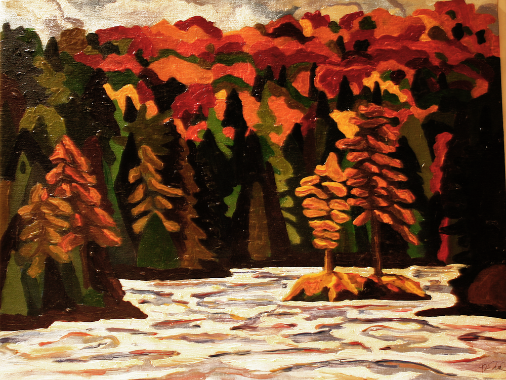 Daisy Lake - Algonquin Provincial Park - Oil on Canvas - by Cork Ireland Freelance Artist - Art van Leeuwen